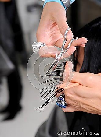 Hairdresser cutting the hair