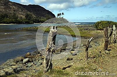 Halawa Bay Hawaii