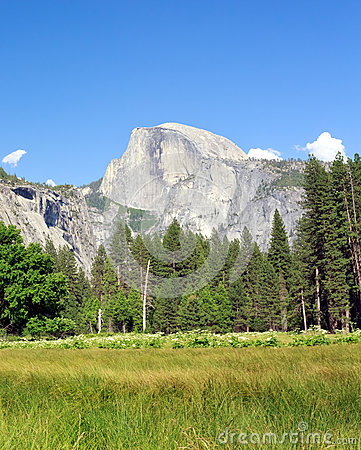 Free Half Dome Royalty Free Stock Images - 31769959