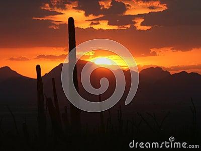 Half Sun Disk with Rays