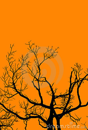 Halloween-Baum auf Orange