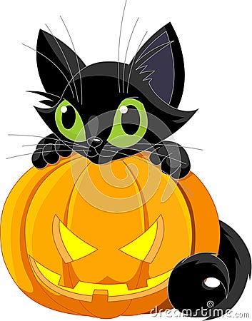 Free Halloween Black Cat Stock Image - 16342631