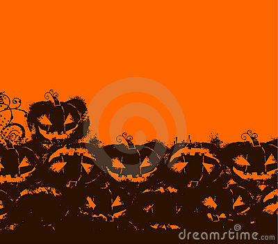 Halloween black & orange