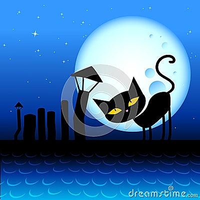 Halloween cat.
