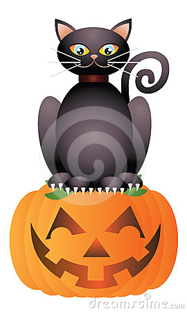 Halloween Cat Sitting on Pumpkin Illustration