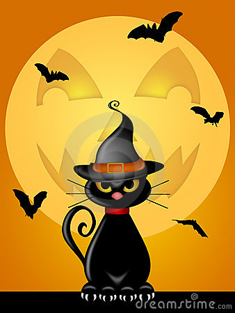 Halloween Cat Witches Hat Jack O Lantern Moon