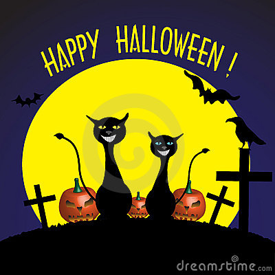 Halloween creepy cats