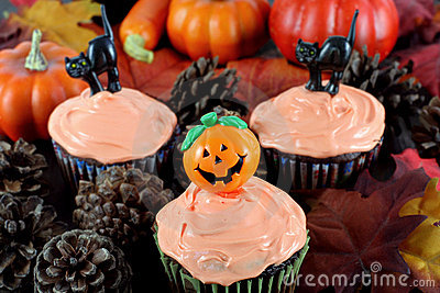 Halloween Cupcakes in Evening Fall Setting