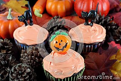 Halloween Cupcakes in Evening Fall Setting