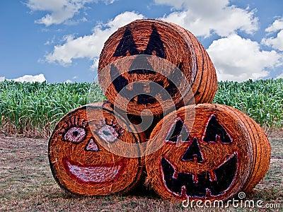 Halloween Hay Bales 8291 Royalty Free Stock Photos Image