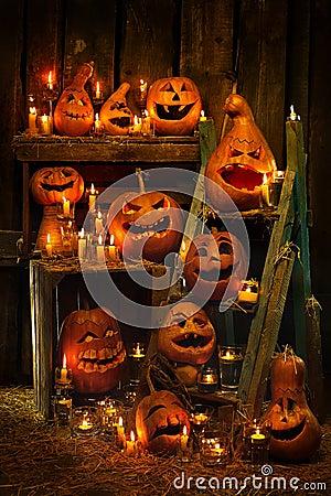 Halloween-Kürbise