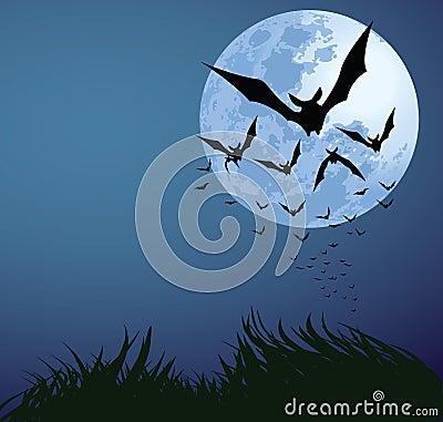Free Halloween Night Stock Images - 15884864