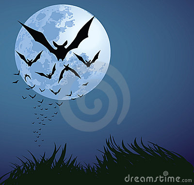 Free Halloween Night Royalty Free Stock Photos - 15884898