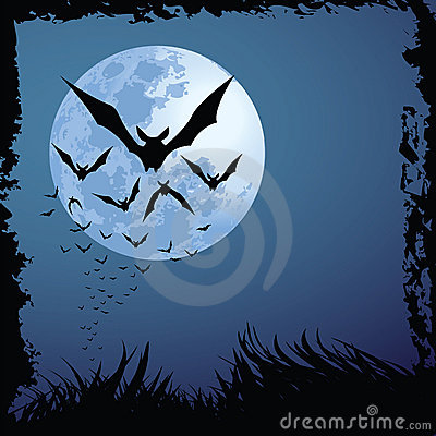 Halloween Night Stock Photo - Image: 15884920