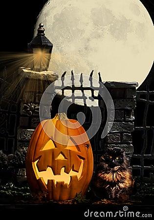 Halloween Pumpkin Cat Spider