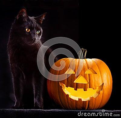 Free Halloween Pumpkin Head And Black Cat Stock Photos - 26640523