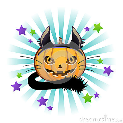 Halloween pumpkin Jack o lantern in black cat cost