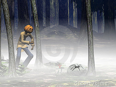 Halloween, pumpkin jack with spider.
