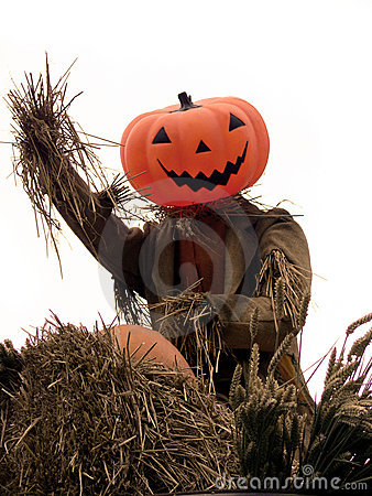 Halloween - Pumpkin Scarecrow