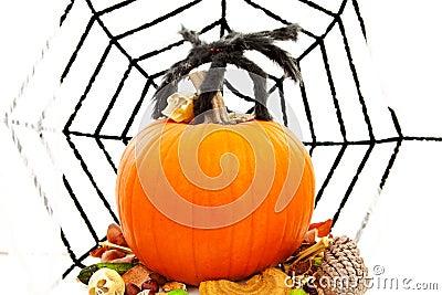 Halloween pumpkin with spiderweb