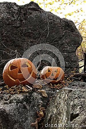 Halloween pumpkins on rocks with leaves