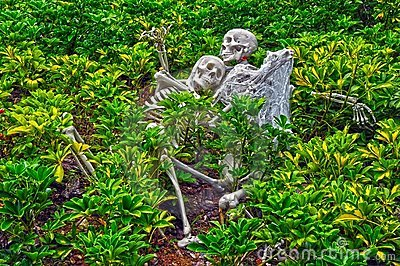 Halloween skeletons decoration