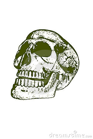 Halloween skull stamp