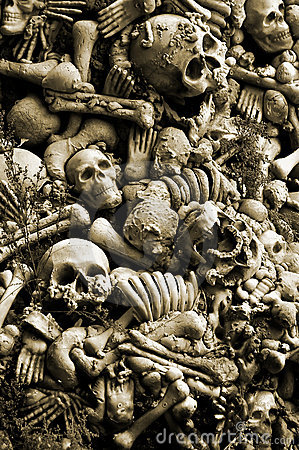 Free Halloween Skulls And Bones Stock Photography - 6904942
