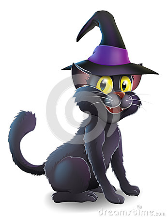 Halloween Witch Cat