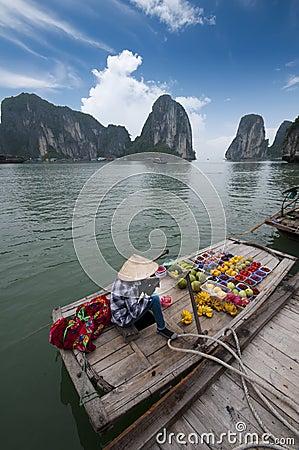 Free Halong Bay, Vietnam Royalty Free Stock Photo - 22512225