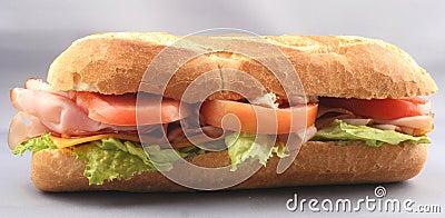 Ham sandwich; hoagie; sub