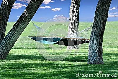 Hamaca colgada entre los árboles