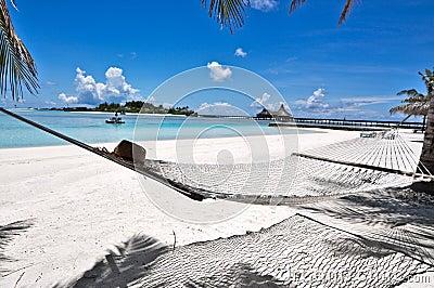 Hamaca Maldives De La Playa Fotograf A De Archivo Libre De