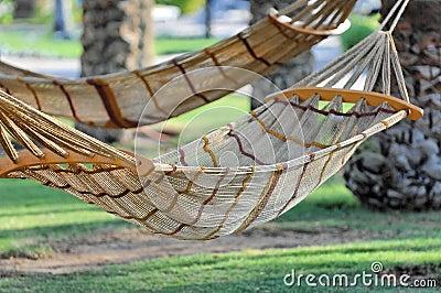 Hamacas atadas a los árboles