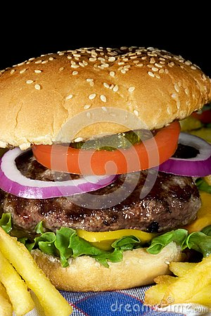 Free Hamburger Stock Image - 19695251