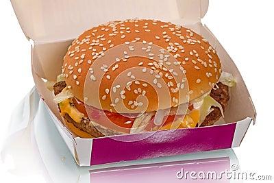 Hamburger in carton