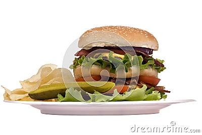 Hamburger Series (Bacon cheeseburger on plate)