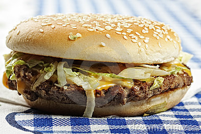 Hamburger on tablecloth sideview