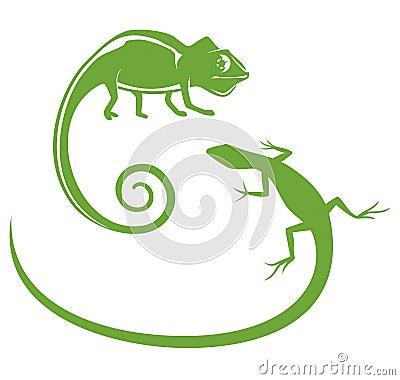 Сhameleon & Lizard