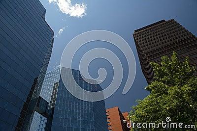 Hamilton Towering Buildings
