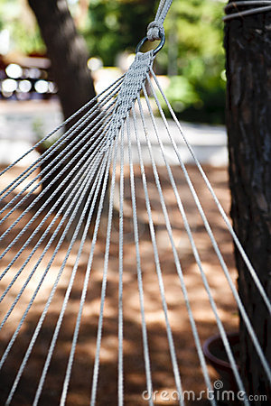 Hammock close-up