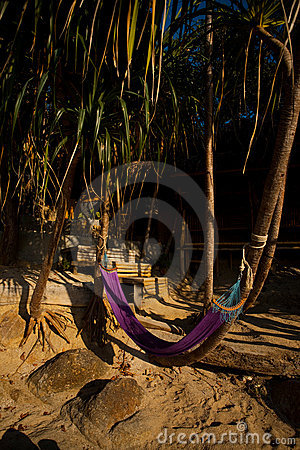 Hammock Fronting Bungalow Secluded Tropical Beach