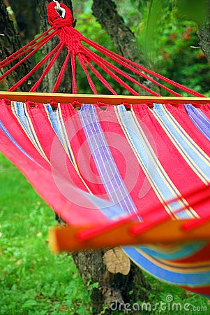 A hammock in the garden