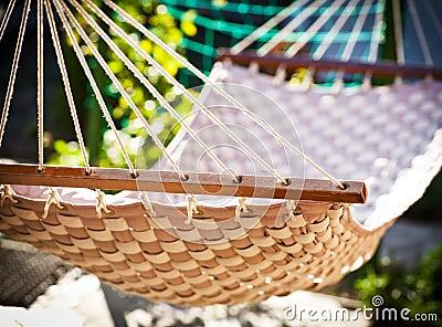 Hammock hanging in the sunny yard