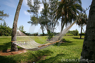 Hammock with Ocean View