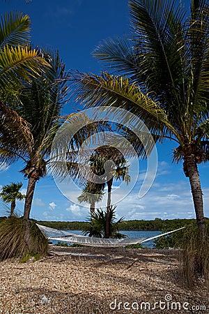 Hammock Overlooking Ocean