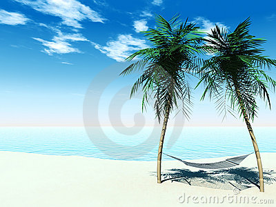 Hammock between palmtrees