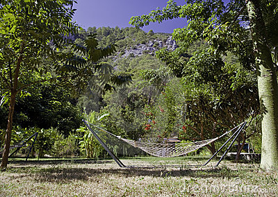 Hammock on tropic lawn
