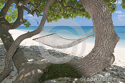 An hammock in tropical paradise turquoise water sand beach