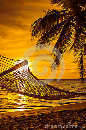 Free Hammock With Palm Trees On A Beautiful Beach At Sunset Royalty Free Stock Photos - 30516658